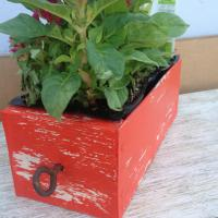 Repurposed Vintage Drawer Planter Photo