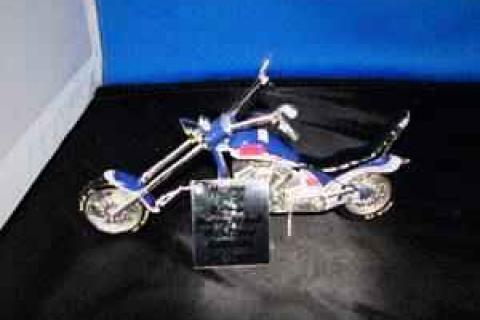 Dale JR.'s Custom Motor Cycle Photo