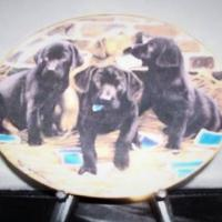 Franklin Mint Collectible Painted Plates Photo