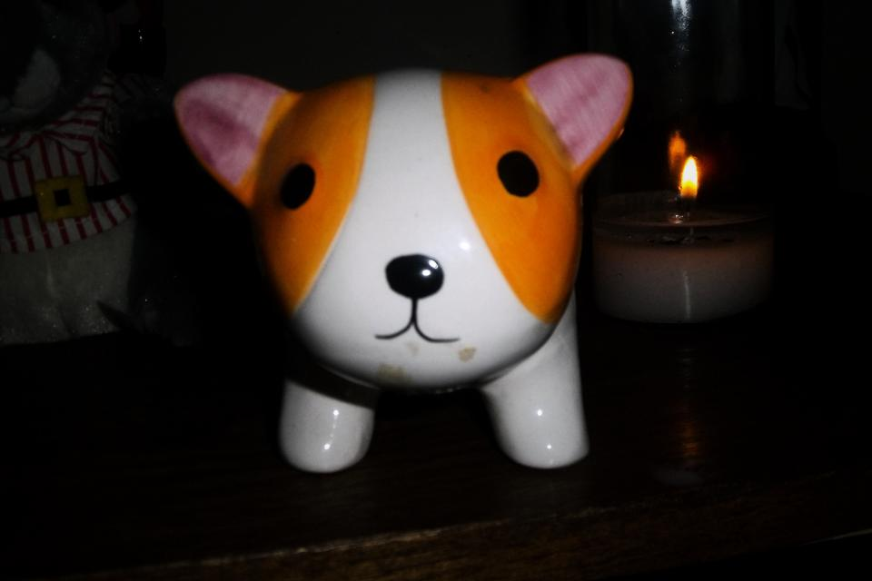 Adorable Hand Made Cat Piggy Bank Large Photo