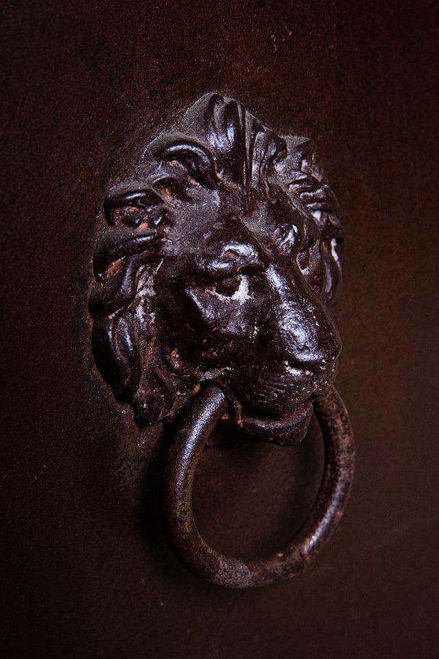 Lion Towel Ring Large Photo