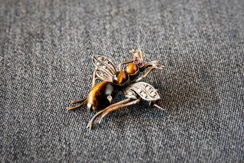 Tiger Eye Bug Pin Photo
