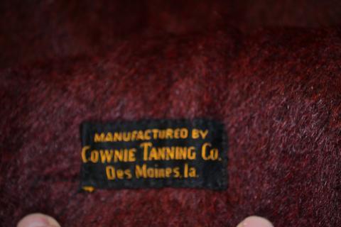 Antique Horse Sleigh Blanket Photo