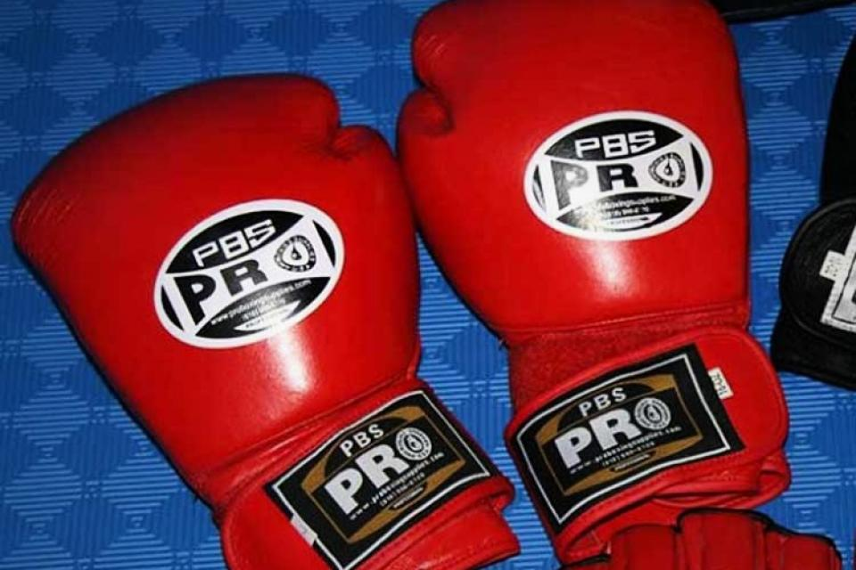 Professional Leather Boxing Gloves NEW Large Photo