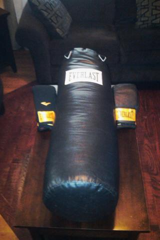 70 lb. Everlast Punching Bag Photo