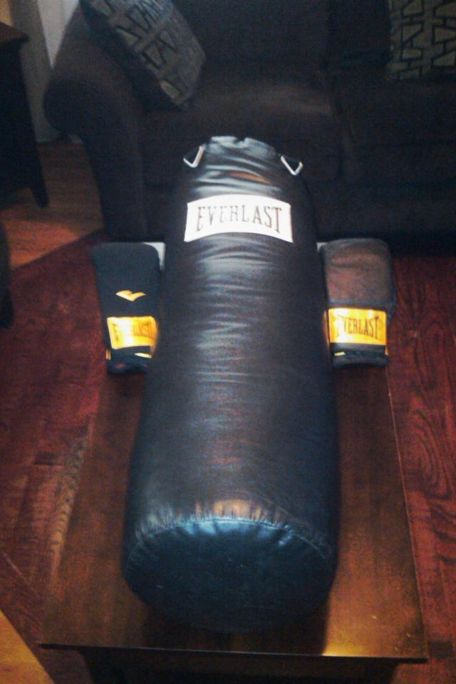 70 lb. Everlast Punching Bag Large Photo