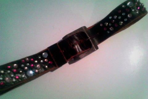 Leather Jewled Belts Photo