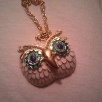Owl Necklace Photo